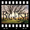 Cover Big fish - Le storie di una vita incredibile